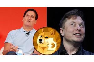 Илон Маск и Марк Кьюбан назвали самую сильную криптовалюту, и это не биткойн.
