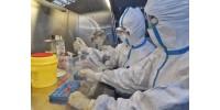 Открыто новое лекарство от коронавируса